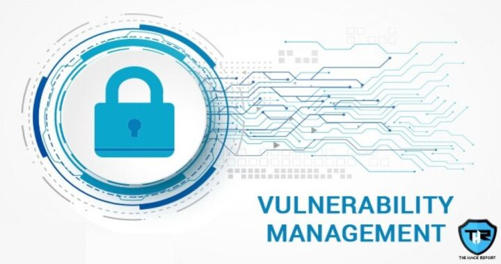 All Your Queries About Vulnerability Management
